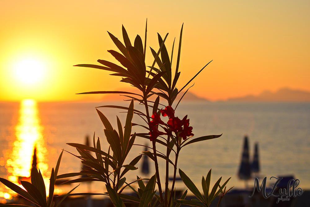 Rakelhome - Il sole si appresta a tramontare - Milazzo